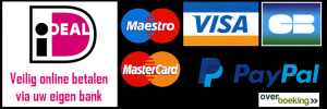 payment-picto